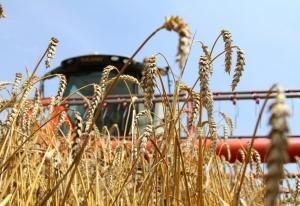 Иркутская нефтяная компания помогла аграриям Усть-Кутского района в уборке зерновых