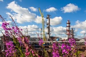 Консалтинговая компания Ramboll Environ оценит воздействие проектируемого Усть-Кутского завода полимеров на природную и социальную среду