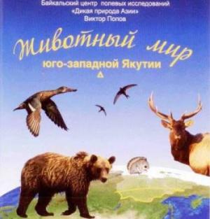 Животный мир на страницах книги