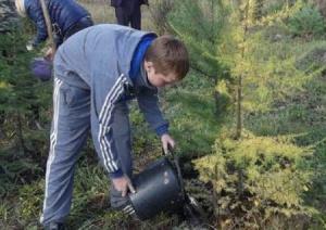 ИНК приняла участие впроведении XIIIобластного слета школьных лесничеств